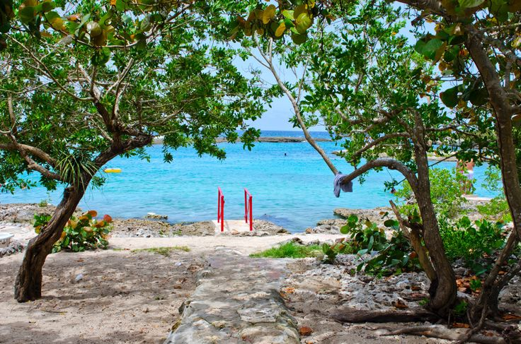 #пляж #beach #океан #cuba #куба #500px #vsco #photoshop #instagramnikonrussia #natgeo #nikon #d610 #sigmaphoto #sandisk
