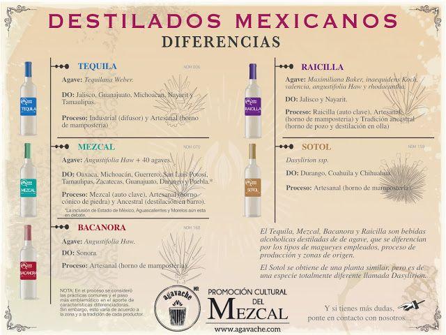 Destilados de agave mexicanos, diferencias en 2020   Tequila, Mezcal,  Destilacion