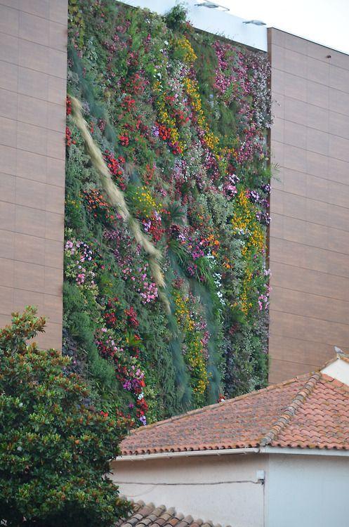 Vertical garden in cavalaire sur mer living walls for Living walls vertical gardens
