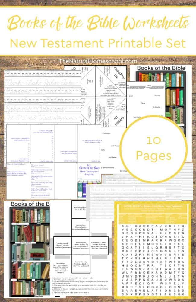 It's just a graphic of Books of the Bible Printable Worksheets with sunday school