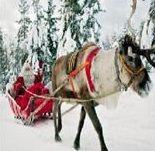 Lapland day Trip with snowmobile Trip, Reinder Sleigh Ride, Husky Sled Trip and a private meeting with Santa!