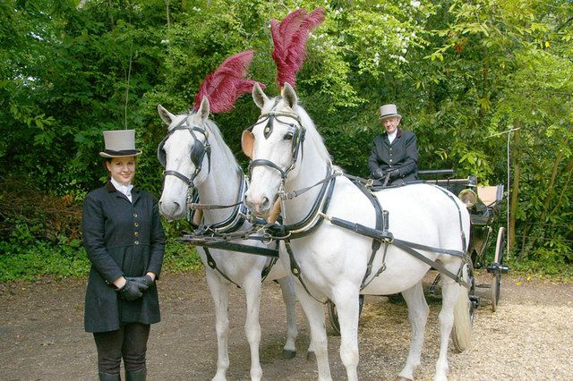 Travel To Your Wedding In Style