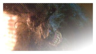 Howling, The (1981) http://terror.ca/movie/tt0082533