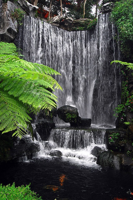 Waterfall @ Longshan Temple, Taipei, Taiwan-another site that looks much cooler in pictures than it does in person.