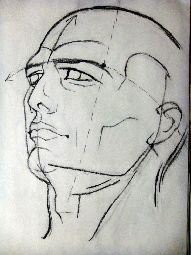 Line Drawing Human : Best images about contour portraits on pinterest