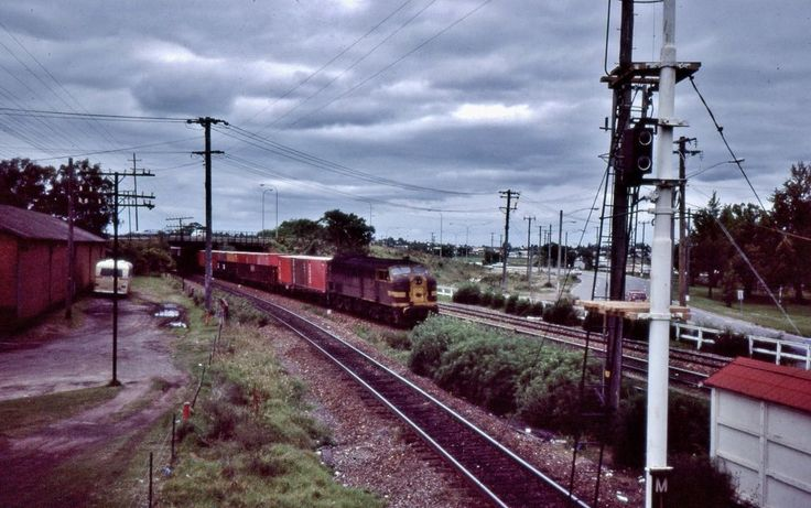44 class locomotive hauls a northbound freight train at Maitland, NSW,1984.