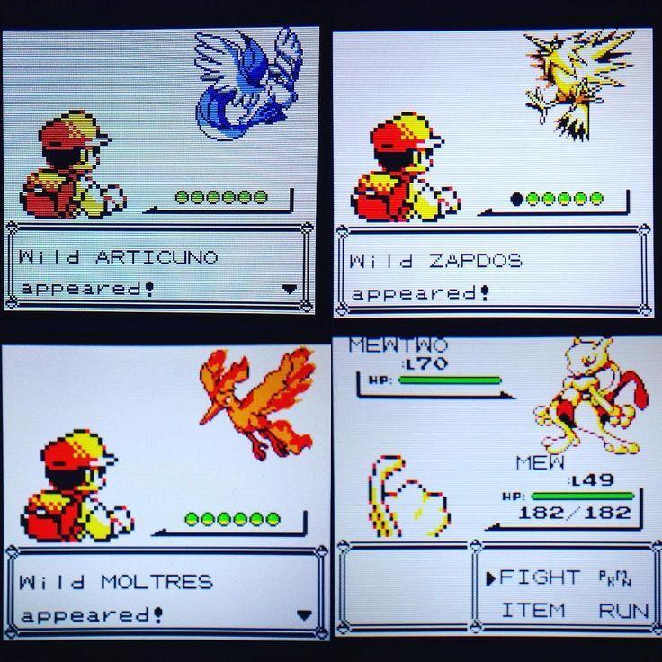 On instagram by edulaiho #gameboy #microhobbit (o) http://ift.tt/1LkvQ5x generations legendaries!  #pokemon #pokemon20 #pokemon20th #pokemon20thyears #pokemon20thanniversary #pokemonyellow  #virtualconsole #new3ds #3ds #new3dsxl #3dsxl #pokefan #gamefreak #nintendo #articuno #zapdos #moltres #mewtwo #mew #red #pokemonyellowversion