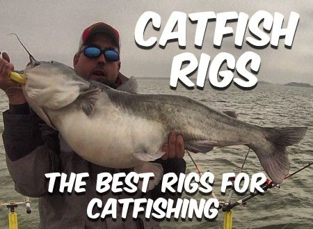 Catfish rigs for fishing for blues, channels and flathead catfish. All the catfish rigs you need to know for all the most effective catfishing techniques.