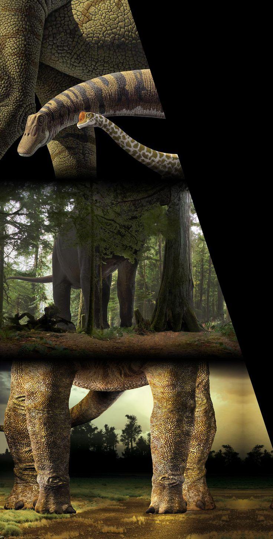 expo les dinosaures au museum de Paris.
