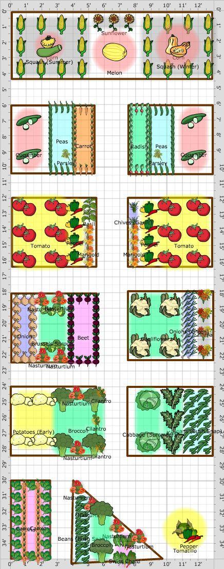 Garden Plan - 2013: walker garden