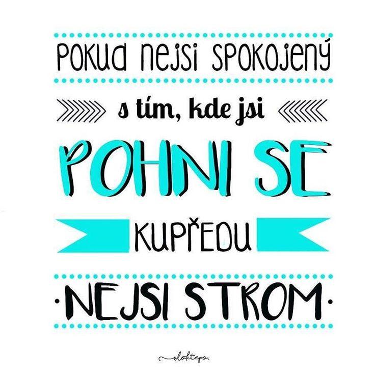 Občas je velmi těžké pohnout se z místa, ale jakmile se pohnete, uvědomíte si, že je to nejlepší rozhodnutí, které jste kdy udělali. Krásný den všem ☕ #sloktepo #motivacni #hrnky #miluji #zivot #kafe #mujzivot #mojevolba #inspirace #darek #domov #dokonalost #dobranalada #pozitivnimysleni #stesti #laska #rodina #czech #czechboy #czechgirl #praha #prima #nakupy