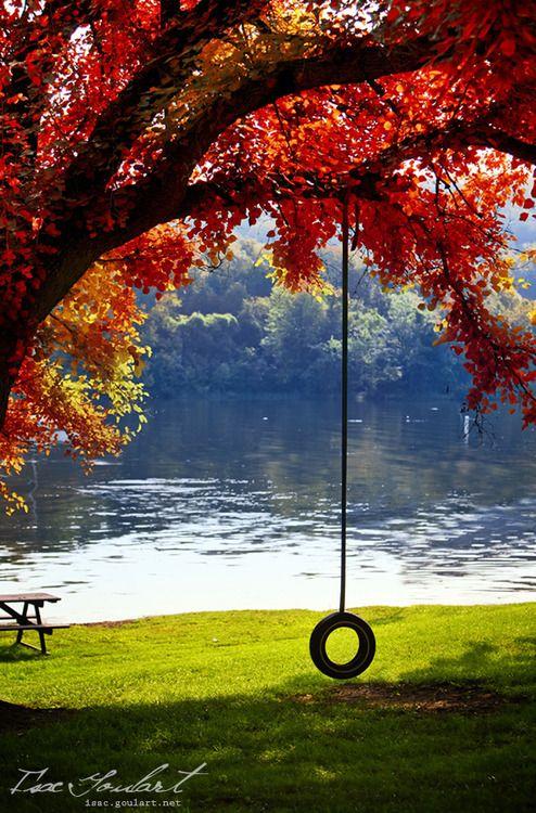 Autumn-pretty!