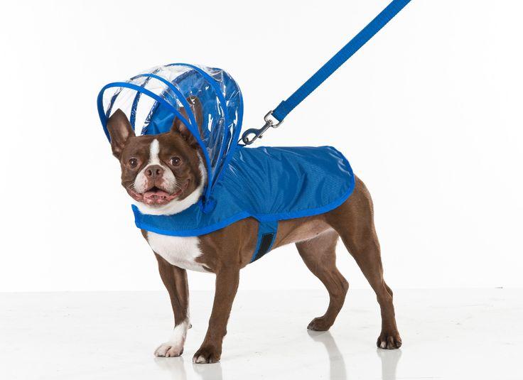 Adjustable Hood Dog Raincoats by Push Pushi - Dog Milk