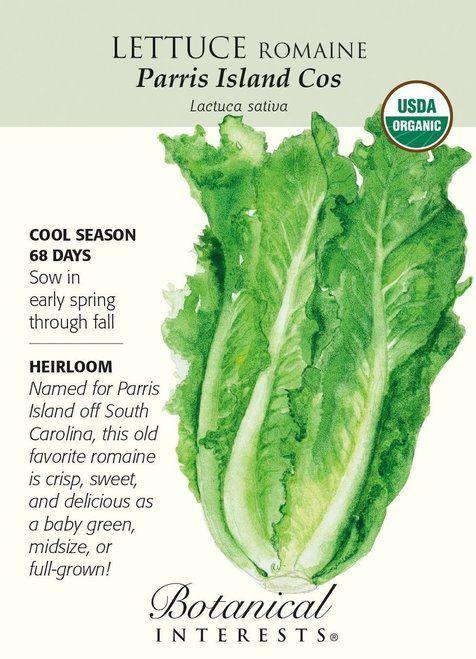 Organic Parris Island Cos Romaine Lettuce Seeds - 1g