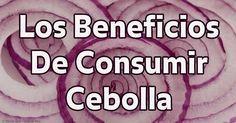 Las cebollas son una fuente excelente de quercetina saludable que combate el cáncer y contienen más polifenoles que combaten las enfermedades. http://articulos.mercola.com/sitios/articulos/archivo/2016/08/21/beneficios-de-salud-de-cebollas.aspx
