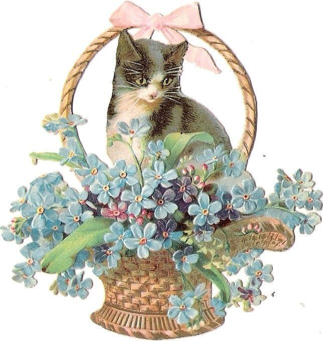 Oblaten Glanzbild scrap die cut chromo Katze cat kitten Korb  Helena Maguire