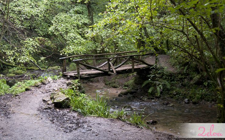 La Ruta de las Xanas y la Senda del Oso (Asturias) ruta perfecta para hacer con niños.