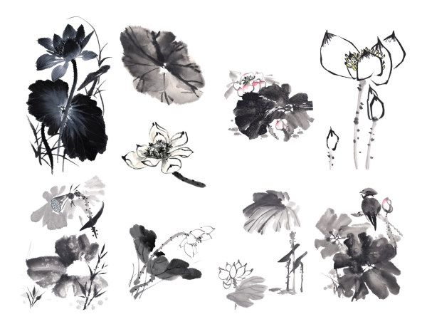 Chinese Painting Ink Lotus