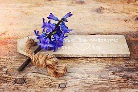 Jacinthe, Fleur, Fleurs, Fleur Parfumée