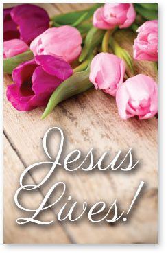 The wonderful message of the Bible is that Jesus lives! After Jesus died on the cross, becoming the only sacrifice for sin, He rose triumphantly from the grave. Now He offers the free gift of eternal