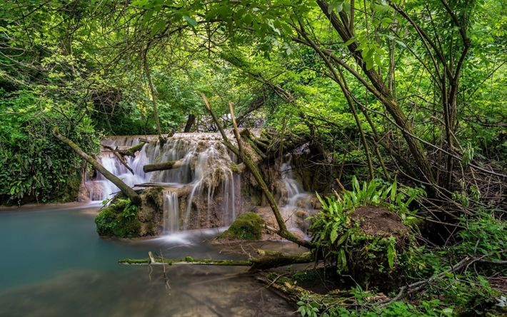 Download wallpapers tropical forest, waterfall, river, beautiful forest landscape, green trees