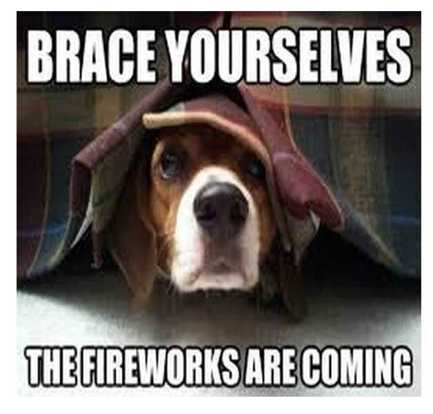Happy Funny 4th Of July Memes That Every American Can Laugh Funny Fireworks Funny 4th Of July Fireworks