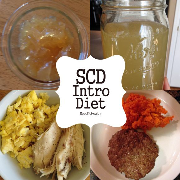 SCD Intro Diet - Lists whats what