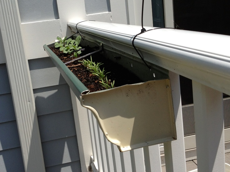 13 best deck gardens images on pinterest gutter garden for Rain gutter planter box