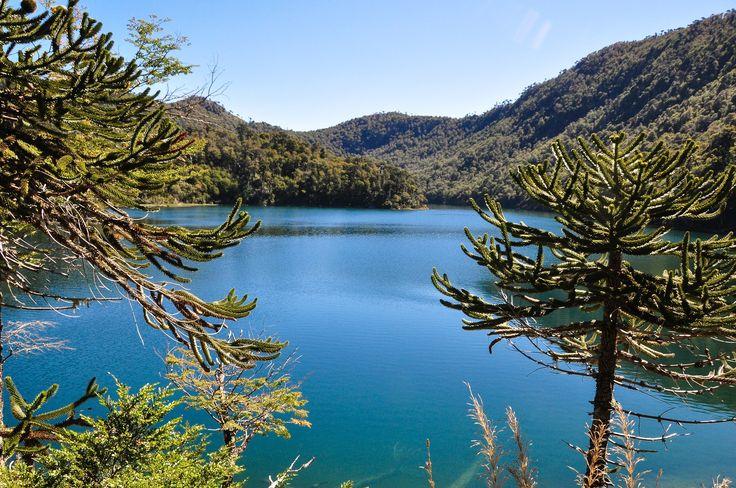 Lago verde, Parc de Huerquehue