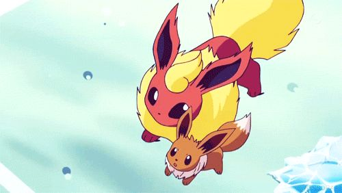 Eevee and Flareon <3