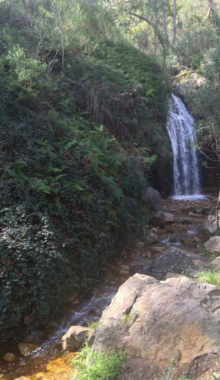 Mount Lofty second fall • walk to Mount • Mt Lofty by riawati