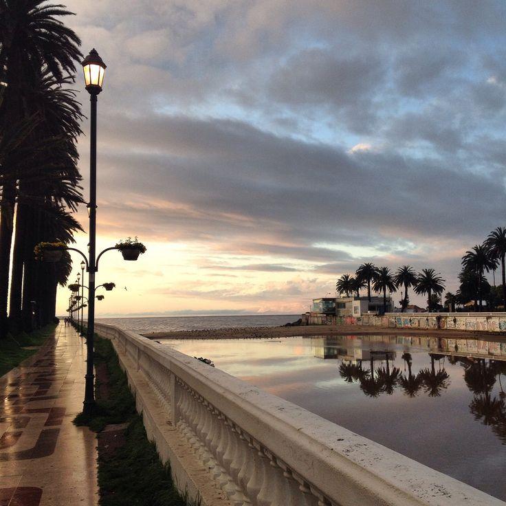 https://flic.kr/p/zhvY1W | Atardece después de un día de lluvia | Viña del Mar, Chile