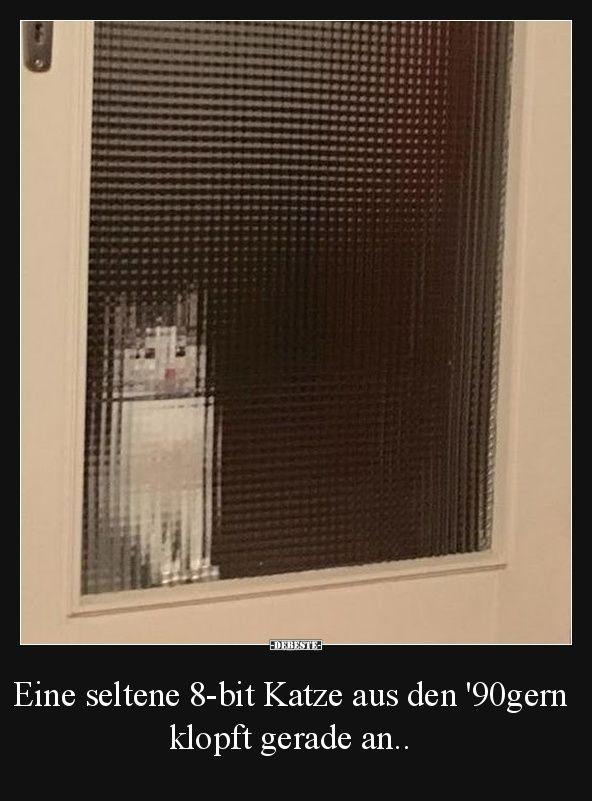 Eine seltene 8-bit Katze aus den '90gern klopft gerade an.. | Lustige Bilder, Sprüche, Witze, echt lustig