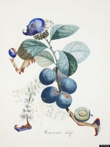 Set of x15 very rare Salvador Dali works