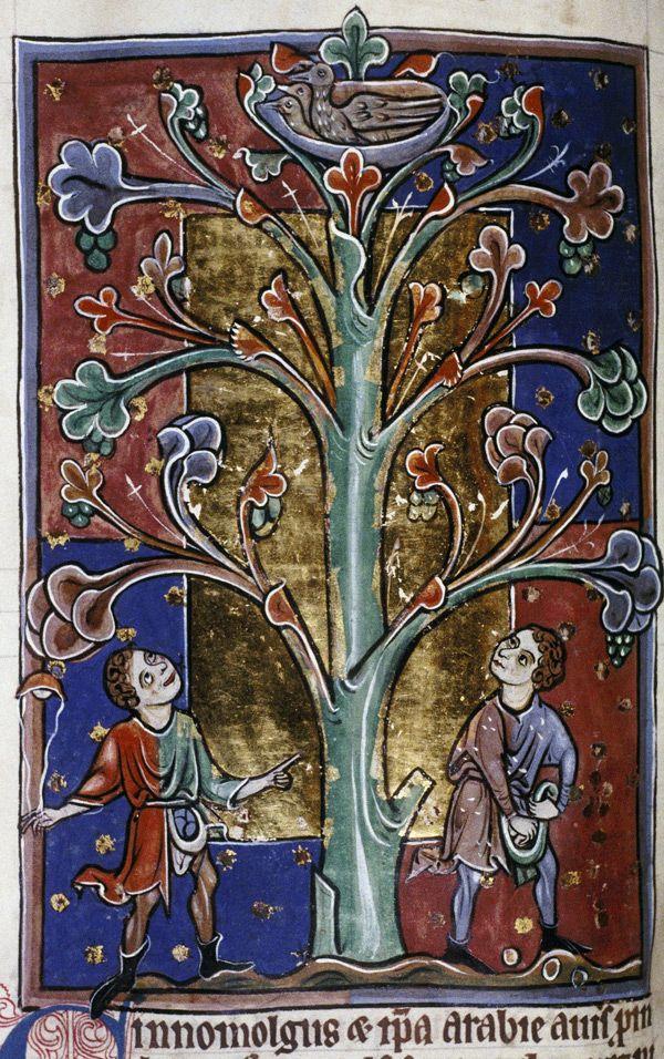 Bodleian Library, MS. Bodley 764, Folio 71v