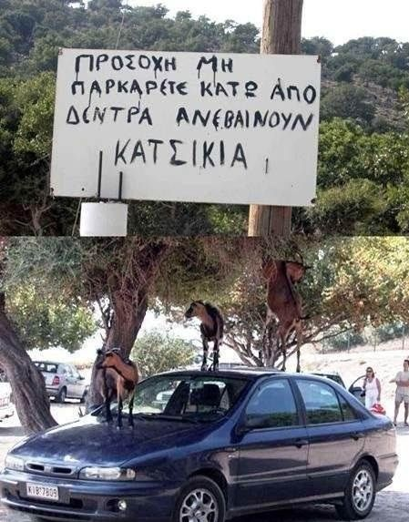 min-parkarete-anebainoun-katsikia