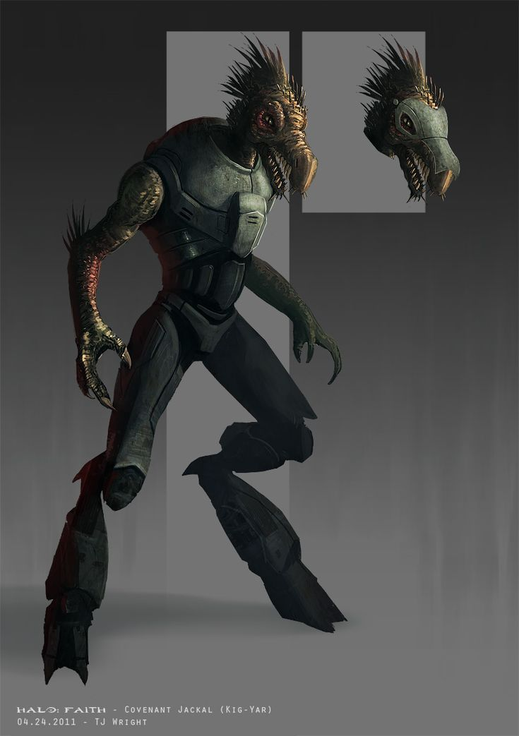 A Jackal. Generally perceived as rather weak, easy targets, but if you're playing on a high enough difficulty, these Covenant snipers might cause you more damage than any other race