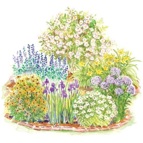 Enjoy beautiful scented roses, cheery daisies, and easy-care daylilies in a 6-by-6-foot spot in your yard with this small garden design: http://www.bhg.com/gardening/plans/by-size/small-garden-plans/?socsrc=bhgpin041914romanticsmallgarden&page=5
