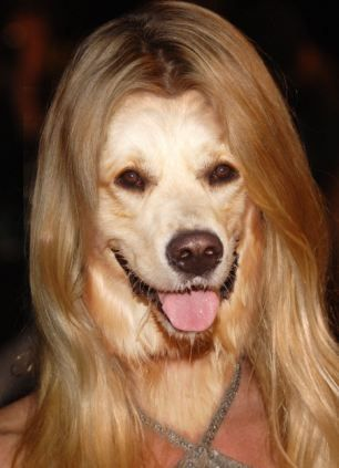 12. She played Edie - a Desperate Housewoof.     Nicole Sheridan and Olivo