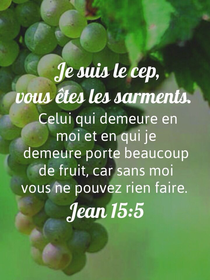 """La Bible - Versets illustrés - Jean 15:5 - Paroles de Jésus     """"Demeurez unis à moi, comme je suis uni à vous. Un rameau ne peut pas porter de fruit par lui-même, sans être uni à la vigne ; de même, vous ne pouvez pas porter de fruit si vous ne demeurez pas unis à moi. Je suis la vigne, vous êtes les rameaux. Celui qui demeure uni à moi, et à qui je suis uni, porte beaucoup de fruits, car vous ne pouvez rien faire sans moi."""""""