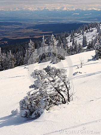 Winter in polish mountains Beskidy