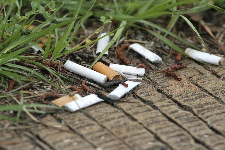 Sobering Facts About Cigarette Litter