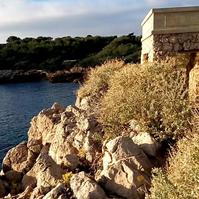 Le running du jour avec @lyricis sur le sentier du littoral du Cap d'Antibes #runners #running #runner #instarunning #instarunner #courseapied #footing #antibes #cotedazur #blue #sea #water #tourism #southoffrance
