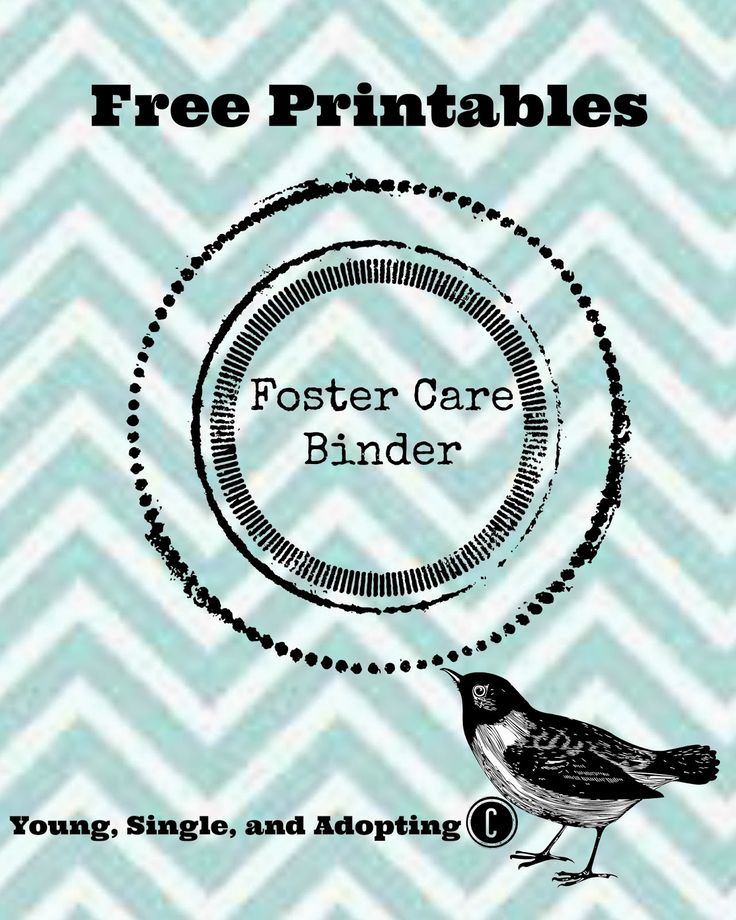 Binder and system for keeping track of the thousands of little things | from Young, Single, And Adopting: Foster Care Binder