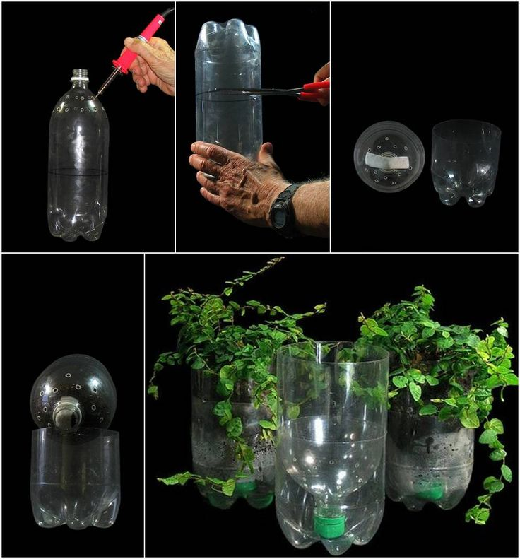 El curioso sistema de auto-riego con una botella de plástico