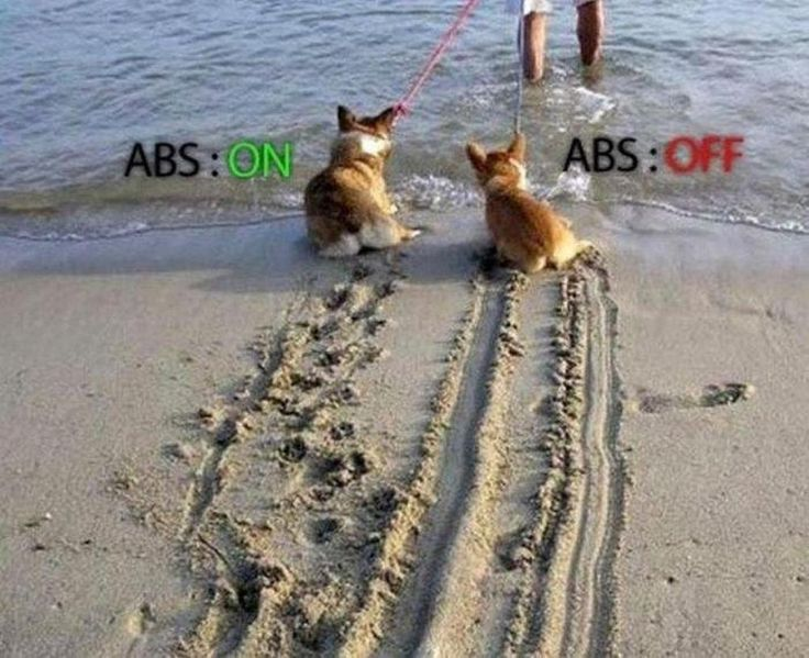 Illustration of anti-lock braking system (ABS)