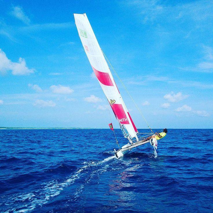 Katamaran segeln sport  Pinterest'teki 25'den fazla en iyi Katamaran segeln fikri ...