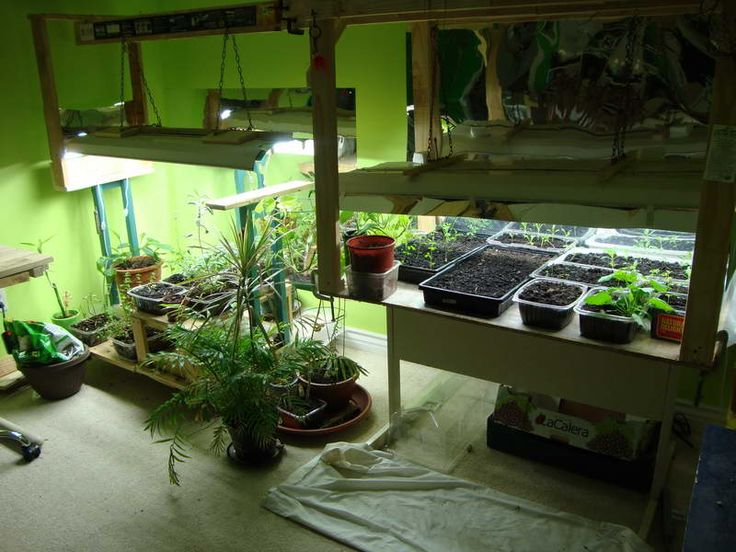 Indoor Vegetable Garden Ideas indoor hydroponic systems the perfect idea for a home garden for indoor vegetable garden ideas Indoor Vegetable Garden