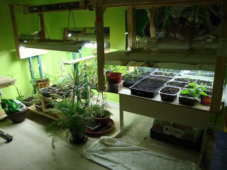 Indoor Vegetable Garden Ideas indoor container gardening tips and ideas Indoor Vegetable Garden