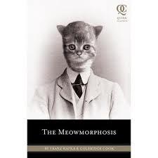 Kafka: Worth Reading, Quirk Classic, Meowmorphosi Quirk, Gregor Samsa, Anxious Dreams, Adorable Kittens, Books Worth, Coleridg Cooking, Franz Kafka